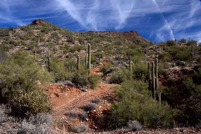 June White_Arizona Highways