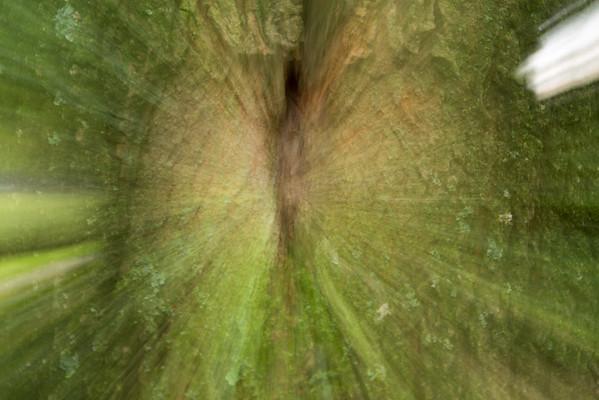 Fotograaf: Marcel. Thema: De kracht van de natuur
