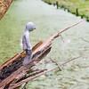 Fotograaf: Kees christian. Thema: De kracht van de natuur en het Manneke
