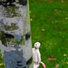 Fotograaf: Mirjam. Thema: Het kleine Manneke