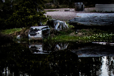 Blackburn_Lloyd_Mirror-Lake-001