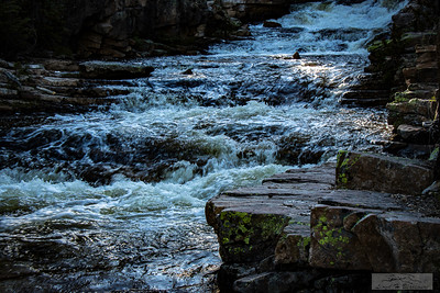 Blackburn_Lloyd_Provo-River-Falls-052