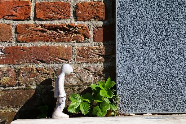 Fotograaf: Jan-Willem. Thema: Voorjaars Manneke
