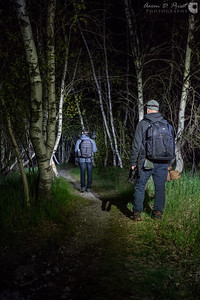 Jesup Path at night