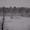 A_Brown_Foggy_Lake1