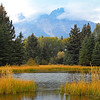 Snake River at Schwabacher Landing, Grand Teton