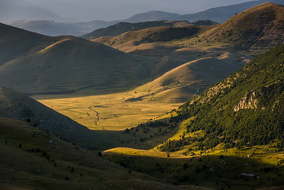 Morning light between the rolling hills