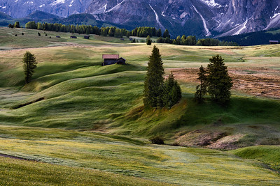 Early morning in Alpe di Siusi