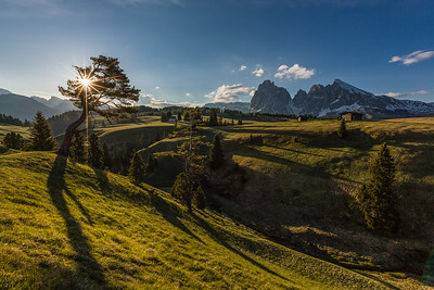 Alpe di Siusi in sunlight