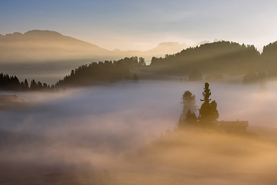 Morning light at Alpe di Siusi with fog