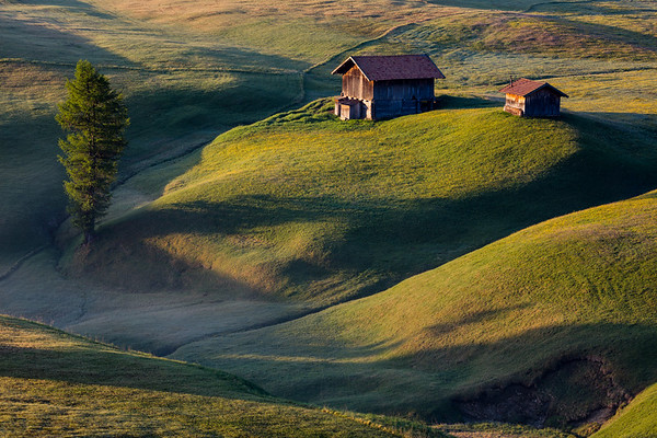 Morning light in Alpe di Siusi