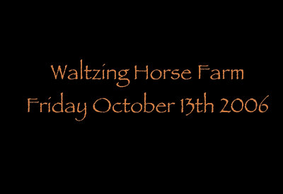 EPN Fall Color Workshop-Catskills, Waltzing Horse Farm.