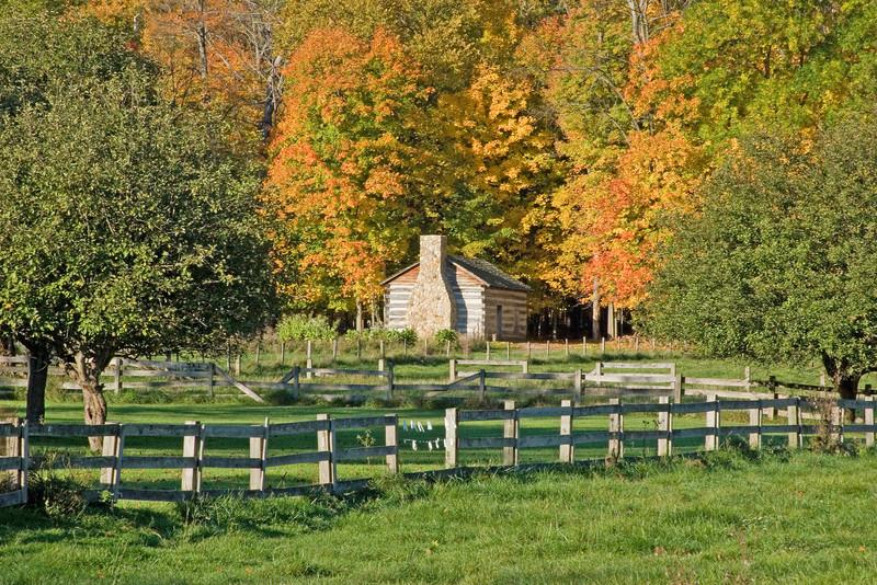 Log cabin at Hale Farm nestled in the fall foliage.