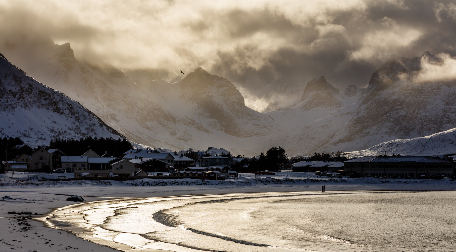 At the beach in Lofoten in winter