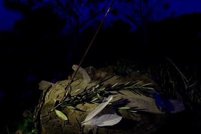 Night still life study 2