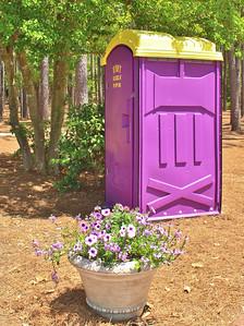Quirky - Pretty porta john - Cathy Locklear IMG_0218