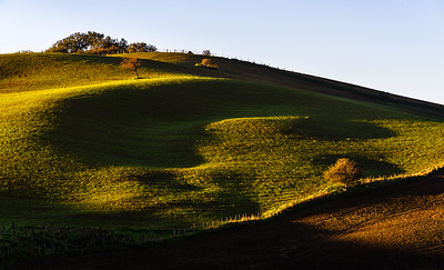 Shadow and light on hillside