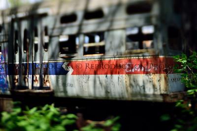 TrolleyGraveyard43017_0057