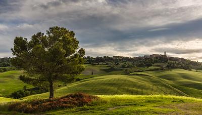 Tuscan landscape with Pienza