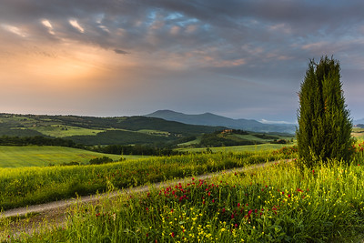 New morning in Tuscany