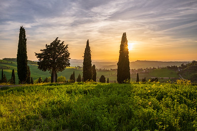 Tuscan light with villages and cypress trees