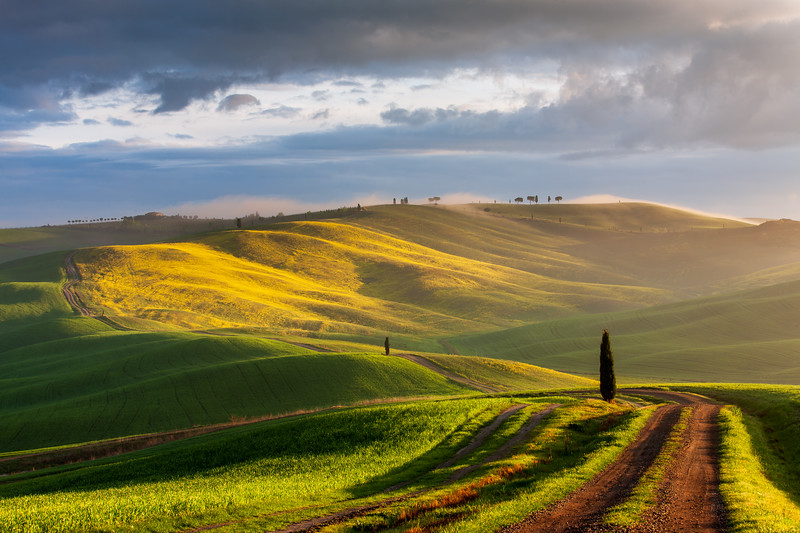 Morning light in Tuscany