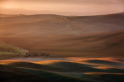 Rolling hills in Tuscany Val d'Orcia