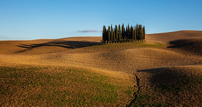 This photo was shot during the Tuscany November 2016 photo workshop.