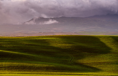 Light on Tuscan landscape