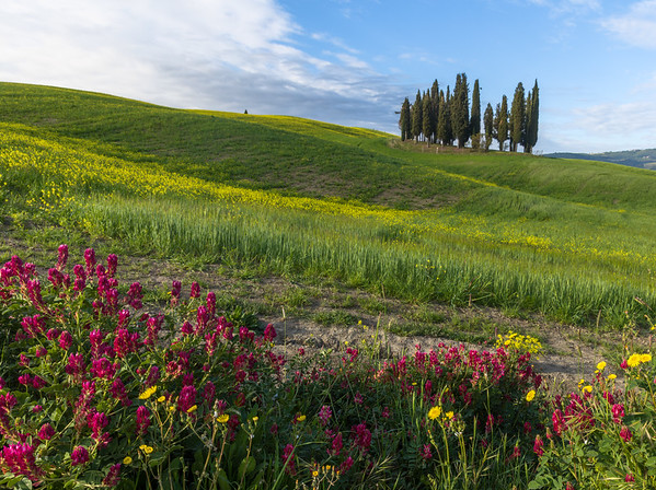 This photo was shot before the Tuscany May 2017 photo workshop.