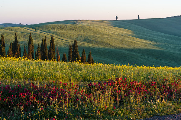 This photo was shot during the Tuscany May 2017 photo workshop.