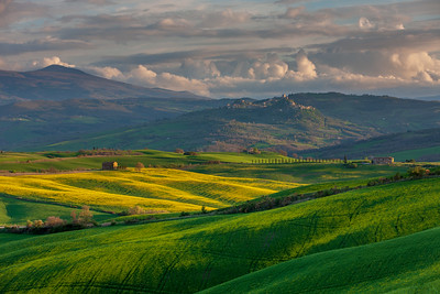 Afternoon light in Val d'Orcia