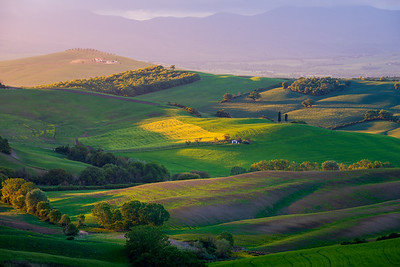 Rolling hills in the light