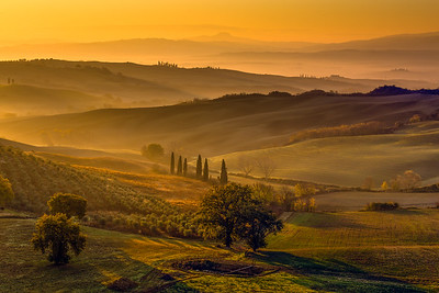 Golden Light in Val d'Orcia, Tuscany
