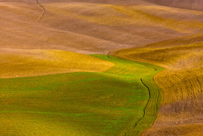Patterns in Tuscan Landscape, Italy