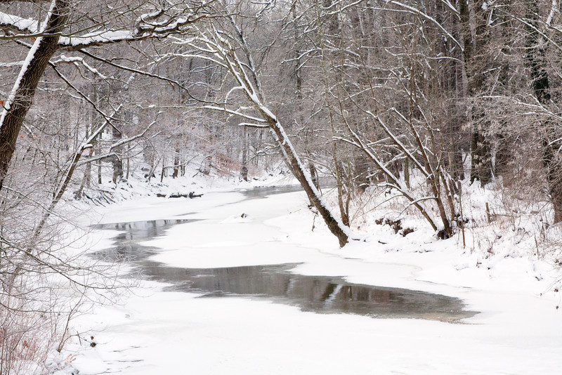 1/10/2010.  Mostly frozen Black River taken from the Crook Street Bridge.