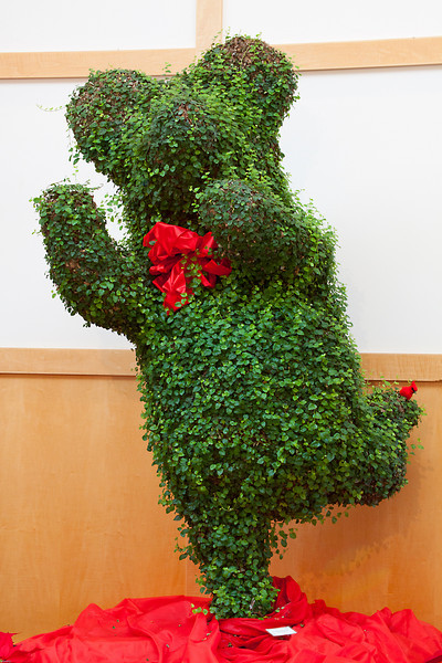 Holiday Bear at the Botanical Garden.  See my Botanical Garden Gallery for more from there.
