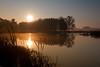 Sunrise over the Crook Street Wetlands.