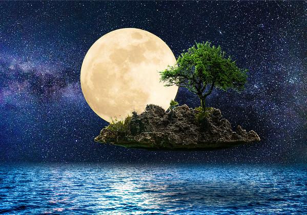 Floating Island Composite