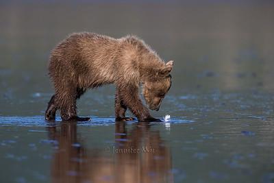20130722_2_Bears_114