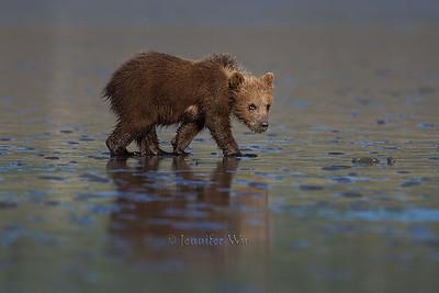 20130722_2_Bears_035