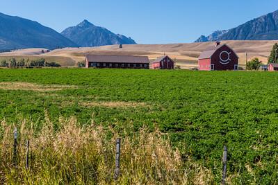 Historic Brennan Ranch