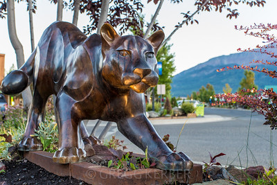 Mountain Lion in bronze