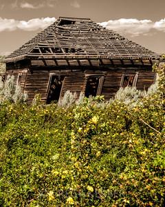 Abandoned house along Bakeoven Rd.