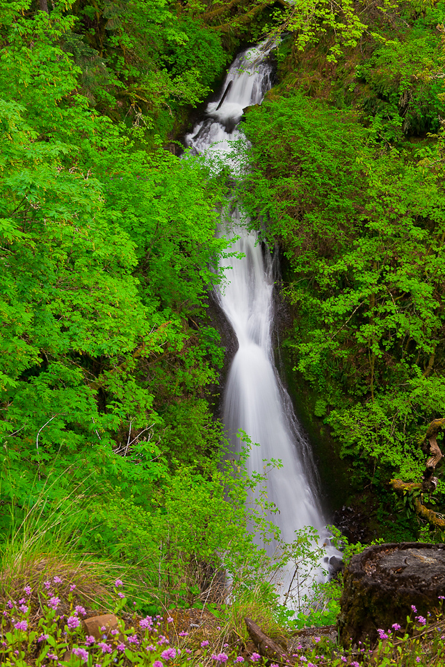 Shepards Dell Falls