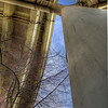 Strong linear element leading to curves with tree texture