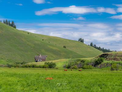 Wallowa Country