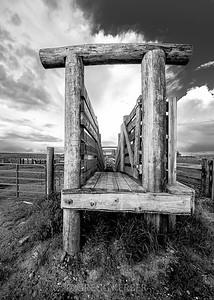 Cattle ranch near Joseph