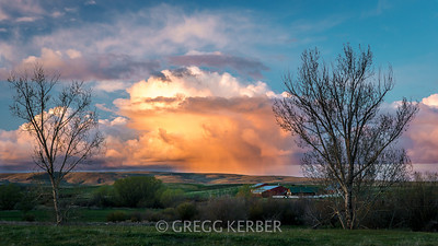 Late light on a thunder cell