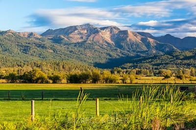 Sept 2014. Cornucopia Mountain.
